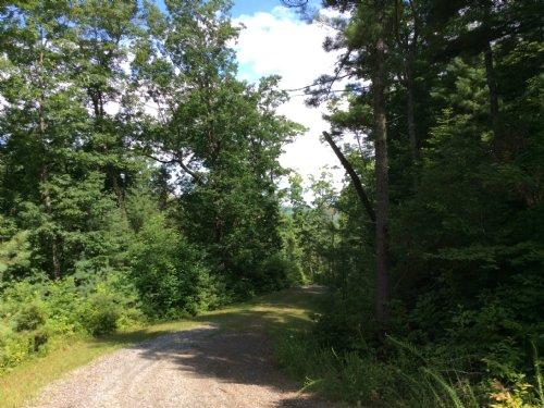 0.9 Acres : Little River Township : Transylvania County : North Carolina
