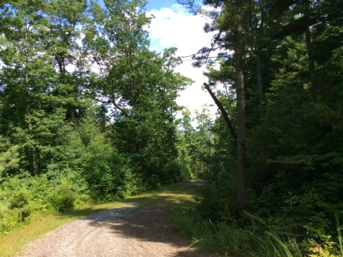 0.93 Acres : Little River Township : Transylvania County : North Carolina