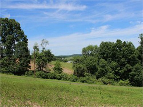 3.85 Acre Building Lot : Stillwater : Columbia County : Pennsylvania
