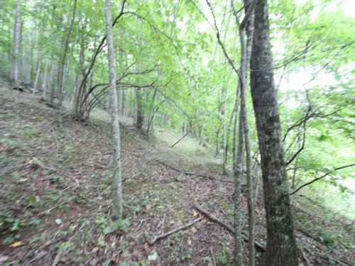 Wooded Blue Ridge Acreage : Independence : Grayson County : Virginia