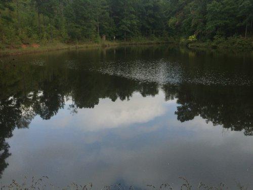 Hunters / Investors Getaway : Monticello : Jasper County : Georgia