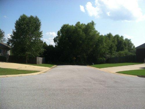 Foreclosed 20 Acres Behind Subd. : Tuscaloosa : Alabama