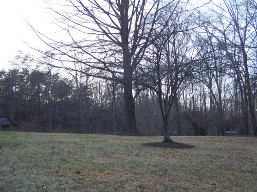 Building Lot In The City : Danville : City of Danville County : Virginia