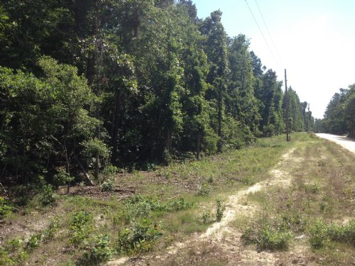 Secluded Homesite In Lexington Co : Gilbert : Lexington County : South Carolina