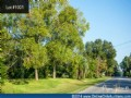 Georgia Land Auction Sparks - 1001
