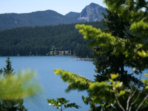 Shelter Cove Resort And Marina : Cresent : Klamath County : Oregon