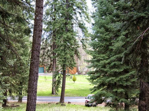 Great Homesite in Rocky Point : Klamath Falls : Klamath County : Oregon