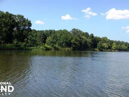Tombigbee Riverfront Lots : Aliceville : Sumter County : Alabama