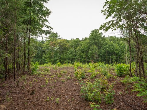 Ww: Mountain Top Mini Farm : Signal Mountain : Sequatchie County : Tennessee