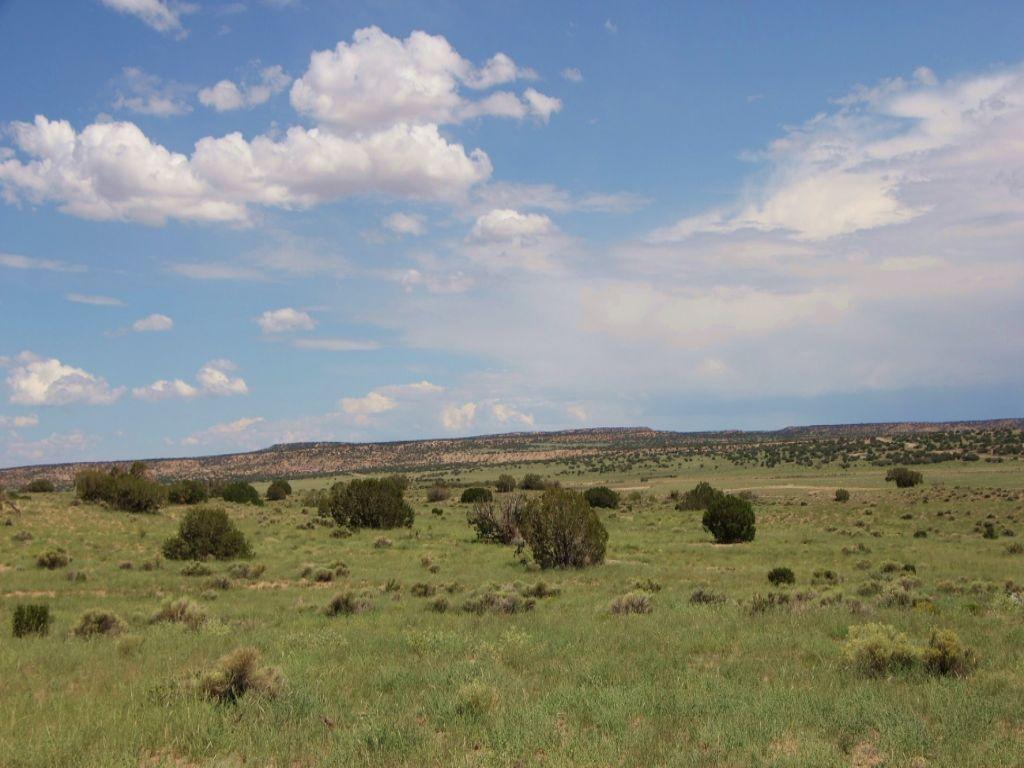 Snowflake Arizona Homesite : Snowflake : Navajo County : Arizona