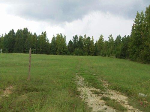 East Franklin Farms - 4.47 Acre Lot : Franklin : Allen County : Kentucky