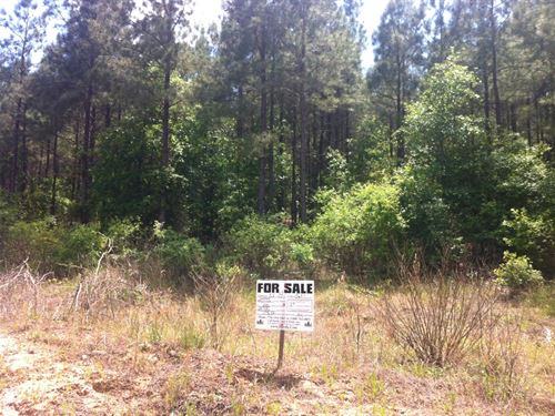 West Fairview Farms, 3.83 Acre Lot : Gray Court : Laurens County : South Carolina