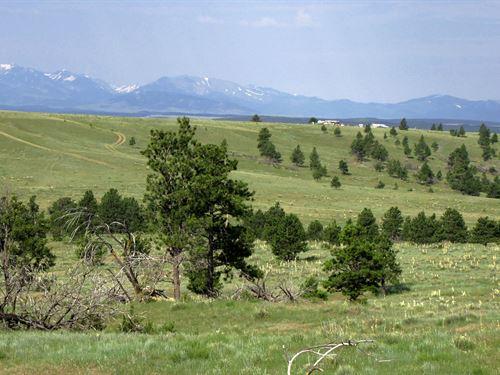 20 Acres With Great Mountain Views : Shawmut : Wheatland County : Montana