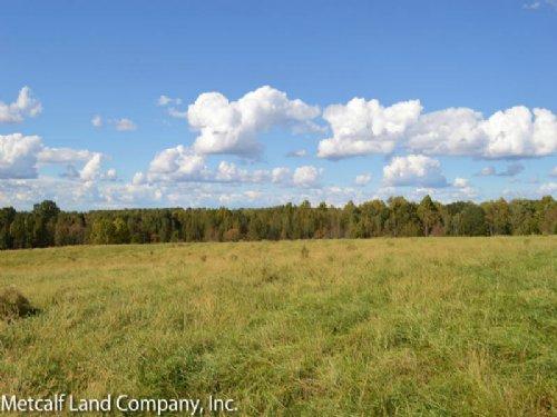 16.4 Acre Walnut Grove Farm : Roebuck : Spartanburg County : South Carolina