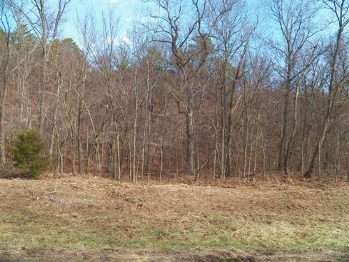 20 M/L Acres N. 542 Road : Tahlequah : Cherokee County : Oklahoma