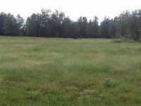 Huck Finn Farms, 6.14 Acre Lot : Batesburg : Aiken County : South Carolina