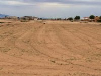West Phoenix Irrigated  Homesite