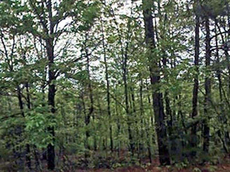 .3 Acre Lot In Fairfield Bay : Fairfield Bay : Van Buren County : Arkansas