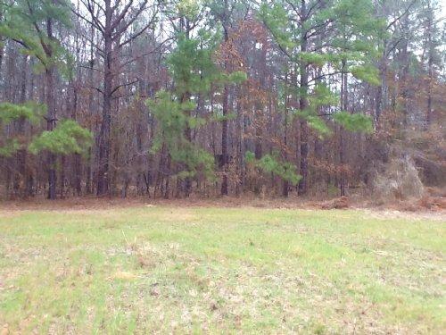 Elvis Alabama River Lot : Lowndesboro : Lowndes County : Alabama