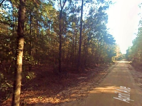 Wooded Corner Property Near Gulf : Fountain : Bay County : Florida