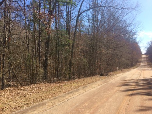 Augusta Road Tract 2 : Ware Shoals : Laurens County : South Carolina