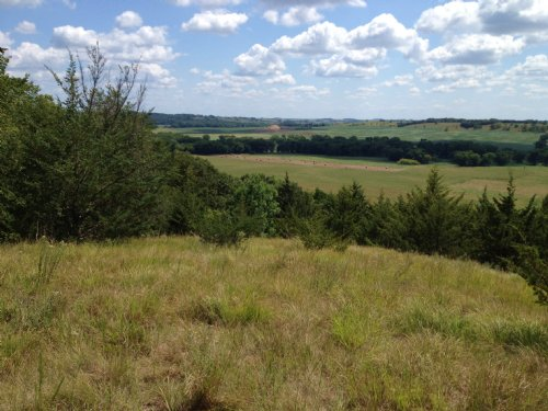 7 Acre Wooded Building Site : Peterson : Clay County : Iowa