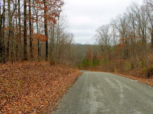 Golf Course Community Building Lot : Paris : Henry County : Tennessee