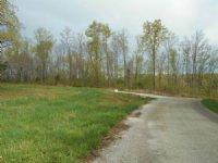 Tubbs Creek Homesites : Mountain View : Stone County : Arkansas