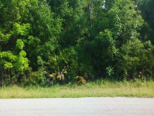 Lot (.52) In Ridgemanor : Webster : Hernando County : Florida