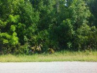 Lot (.52) In Ridgemanor : Webster : Hernando County : Florida