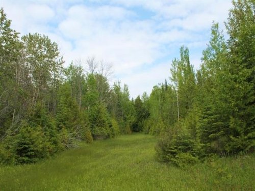 Lot 1 M-183, 1086224 : Garden : Delta County : Michigan
