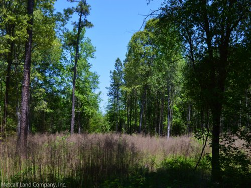 9.5 Acres In Cross Anchor Community : Cross Anchor : Spartanburg County : South Carolina