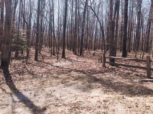 5.03+/- Acres Foreclosed Property : Coalmont : Grundy County : Tennessee