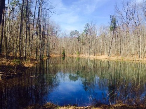16.01+/- Acres With Beautiful Lake : Coalmont : Grundy County : Tennessee