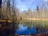 16.01+/- Acres With Beautiful Lake