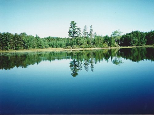 Loon Cove On Bottle Lake : Lakeville : Penobscot County : Maine