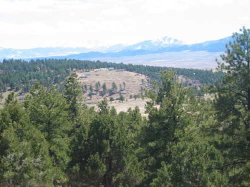 Land Liquidation : Westcliffe : Custer County : Colorado