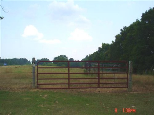 15 Acres Of Open Land : Louisville : Winston County : Mississippi