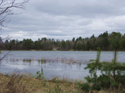4.35 Acres On Bayer Lake : Arbor Vitae : Vilas County : Wisconsin