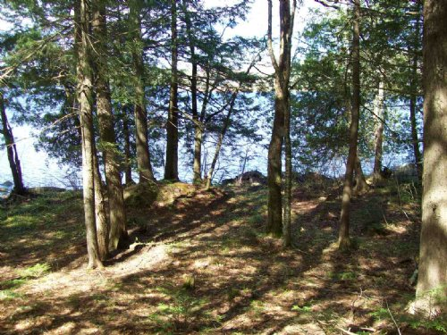 Great Moose Lake Waterfront Lot : St. Albans : Somerset County : Maine