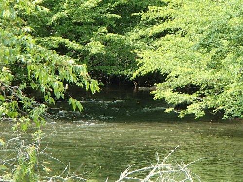 Log Cabin On Premier Trout Stream : Blue Ridge : Fannin County : Georgia
