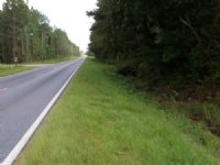 Nice 1 Acre Homesite : Jesup : Wayne County : Georgia