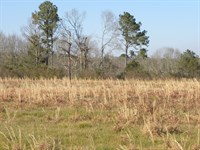 24-028 Centenary Community East : Luverne : Crenshaw County : Alabama