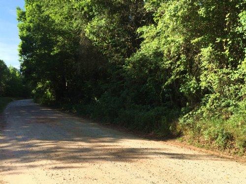 Rural Acreage : Newborn : Jasper County : Georgia
