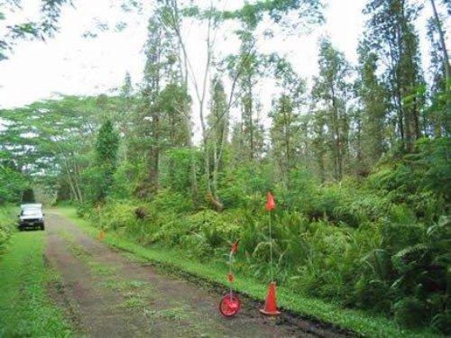 1/4 Acre Nanawale Estates : Pahoa : Hawaii County : Hawaii