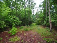 5.50 Acres Vacant Land Off 64 Hwy : Pittsboro : Chatham County : North Carolina