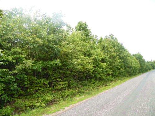 Goode's Knoll : Meherrin : Prince Edward County : Virginia