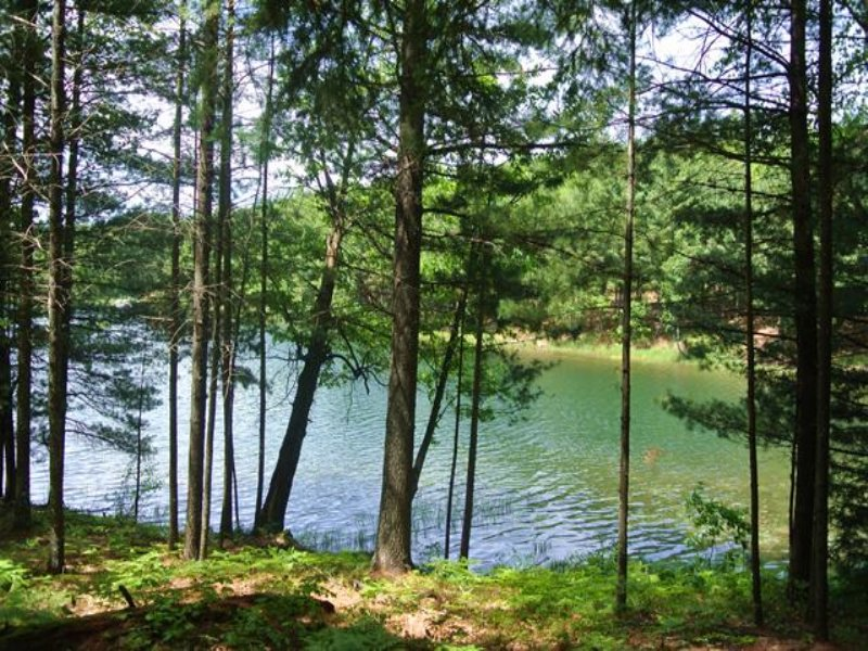 North Two Lakes Lot 1 : Lake Tomahawk : Oneida County : Wisconsin