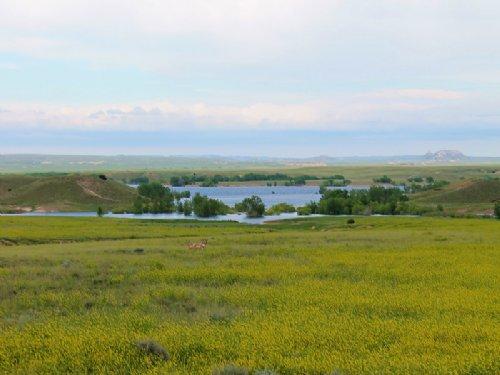52 Tate Lane Lot : Glendo : Platte County : Wyoming