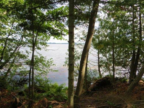 Pelican Lake 15.50 Acres : Enterprise : Oneida County : Wisconsin